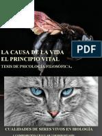 TESIS 5 ELPRINCIPIOVITAL_clase(1).ppt