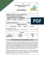 SYLLABUS FORMULACION Y EVALUACION DE PROYECTOS 2018-1