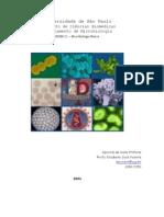 Apostila de microbiologia (aulas práticas)