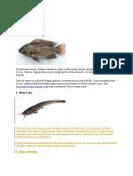 10 jenis ikan konsumsi.docx