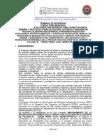 TR CONSULTOR INDIVIDUAL MANUALES.pdf