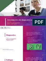 Determinantes del diagnostico organizacional