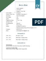 CV amel.docx