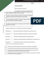 BG1_R-08-03. LAS FUNCIONES VITALES DE LAS PLANTAS.pdf