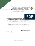UPEL-Carolina Dominguez.docx