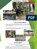 1.- Los ecosistemas , Estructura trofica..ppt