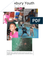 Roxbury Youth Initiative Final Report 2010