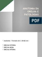 Anatomia da orelha e patologias