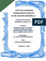 PROYECTO  EMPRESARIAL PROFE LIDIA (8)