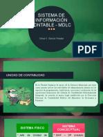 08 - SISTEMA DE INFORMACIÓN CONTABLE - MDLC.pptx