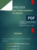BORELIOZApptx (1)