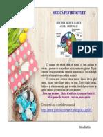 ACTIVITATE SP. 8.pdf