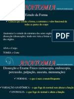 Apresentação de Osteologia 1.pdf
