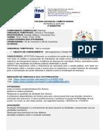 ROTEIRO 7 ANO N5 Especial pdf