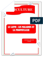 MALADIES DES LAPINS.pdf