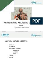 7 Anatomia do tubo digestivo FINAL 2º semestre.pdf