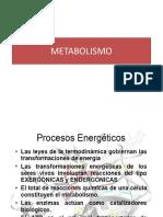 CAPITULO 6.METABOLISMO PRIMERA PARTE (1)