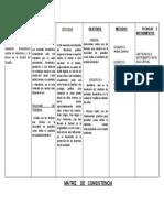 MODELO DE MATRIZ DE CONSISTENCIAMARCO PARA EL PROGRAMA DE DERECHO.docx