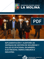 IMPLEMENTACIÓN Y AUDITORÍA DE SISTEMAS DE GESTIÓN DE SEGURIDAD Y SALUD OCUPACIONAL EN MINERÍA, ELECTRICIDAD, HIDROCARBUROS E INDUSTRIA