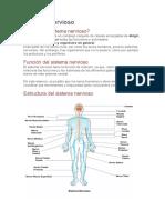 unidad 6  EL SISTEMA NERVIOSO.pdf