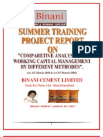 final project of binani cement DOC 2003 (1)