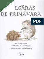 Bulgaras de primavara - Paul Stewart, Chris Riddell