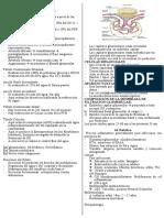 renal resumen
