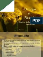 Cirurgia-em-Répteis.pdf