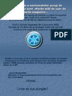 pungiledeplastic