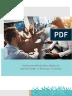 Manual de Pratica em Processos Gerenciais Fael
