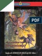 MERP-Los Pájaros de Páramo Largo