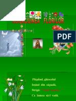 rugaciunea florilor_trifoi.pps