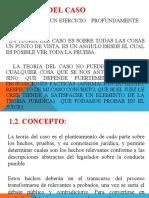 TEORIA DEL CASO TECNICAS DE ORALIDAD