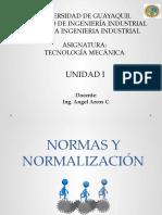 NORMAS Y NORMALIZACIÓN. (1)