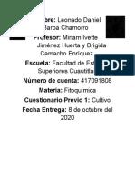 Previo 2 Cultivo.docx