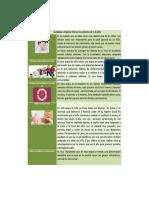 La higiene oral en los niños 1-6_ Viviana Méndez.docx