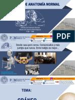2. CRÁNEO 2020.pdf