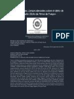 POSESION ILICITA (Arma de Fuego).pdf
