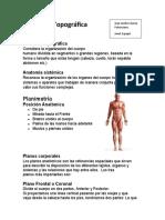Anatomía Topográfica