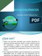AVANCE CICLOS BIOGEOQUÍMICOS
