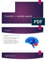 Presentación.pptx