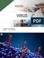 13 VIRUS (1).pdf