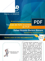 Técnicas del ADN recombinante, PCR y tipos de P.pptx