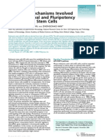 Molecular Mechanisms of Pluripotency
