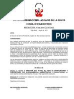 221-2010-CU-R-UNAS DIRECTIVA DE PRODUCTIVIDAD