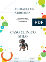 CASO CLINICO MILO
