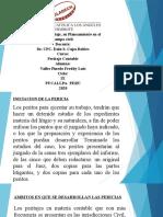 OPA Nº 12  Ambitos del Peritaje, su Planeamiento en el campo civil