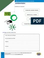 ONG ambientales actividad