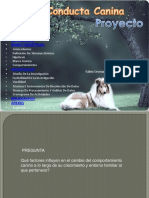 proyecto-111122143755-phpapp01.pdf