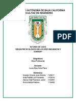 ESTUDIO DE CASO DESASTRE ECOLÓGICO EN LOS RÍOS BACANUCHI Y SONORA.docx